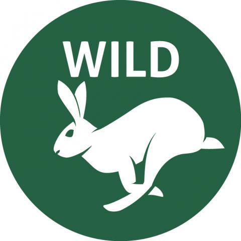 offizielles WILD Logo