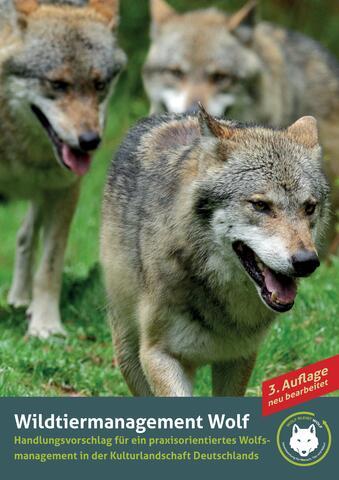 Broschüre: Wildtiermanagement Wolf  Titelbild