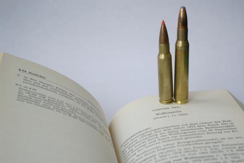 Das neue Waffengesetz hat die letzte Hürde genommen (Quelle: Grimm/DJV)