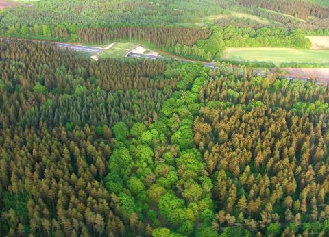Grünbrücke (Quelle: Seifert/DJV)