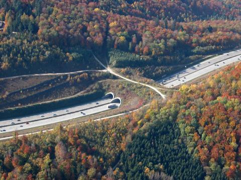 Grünbrücke mit Wirtschaftsweg über Autobahn im Herbst