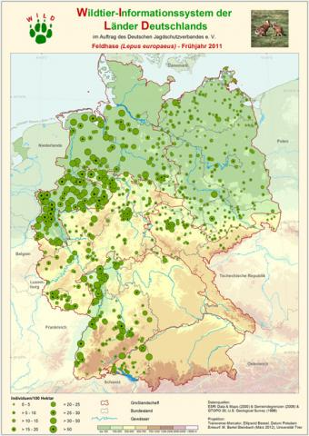 Wildtierinformationssystem Vorkommen Feldhase 2011