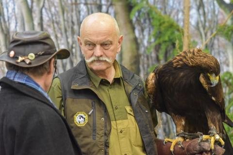 Steinadler oder Seeadler? Die Mitglieder vom Deutschen Falkenorden (DFO) gaben Auskunft.