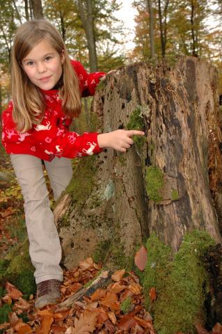 Kind mit Baumstamm