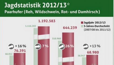 Jagdstatistik Schalenwild 2012/13