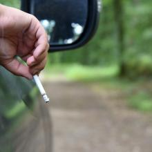 Waldbrandrisiko durch Zigaretten ist hoch