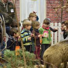 Auf der Grünen Woche führen Lernort-Natur-Experten Kinder- und Schulklassen kompetent durch das Biotop.