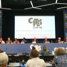 CITES COP 18