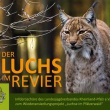 Luchs-Broschüre LJV Rheinland-Pfalz