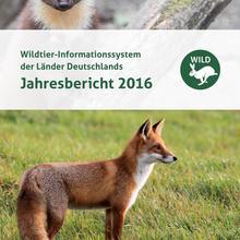 Titelblatt WILD-Bericht