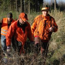 In orange gekleidete Jäger auf einer Drückjagd.