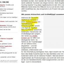 Screenshot Spiegel-Online
