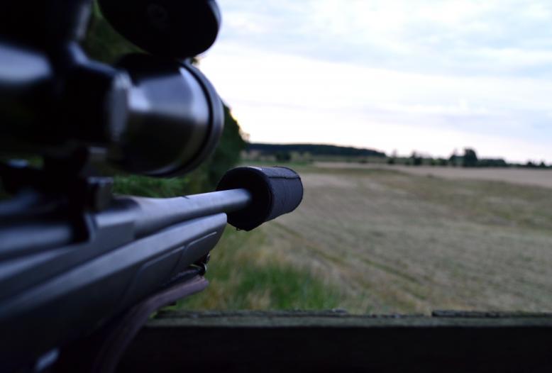 Gemeinsam mit dem FWR hat der DJV heute ein Frage-Antwort-Papier zur Novelle des Waffengesetzes veröffentlicht.