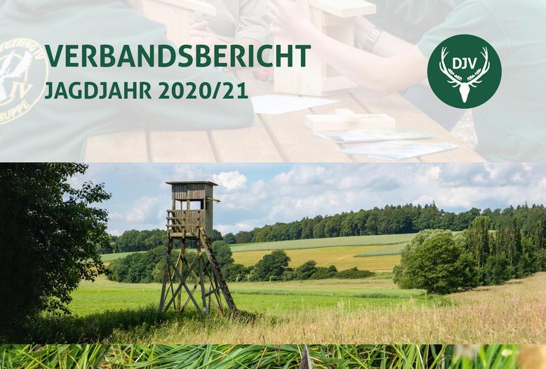 Der DJV hat jetzt seinen Verbandsbericht für das Jagdjahr 2020/21 (1. April bis 31. März) veröffentlicht.