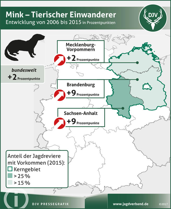Mink: Verbreitung 2006-2015 (Quelle: DJV)