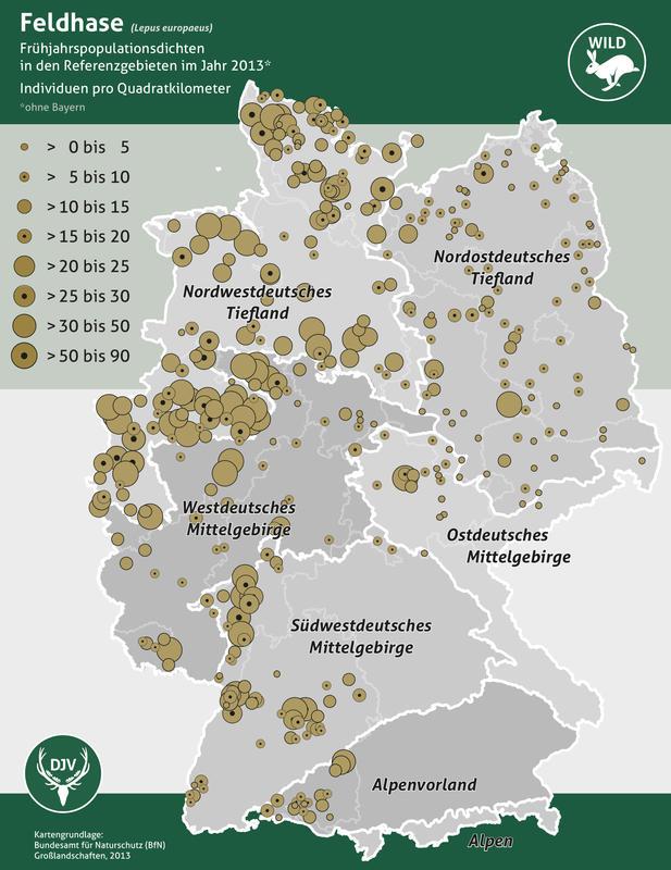Feldhasenzählung 2013 - Werte Referenzgebiete (Quelle: DJV)