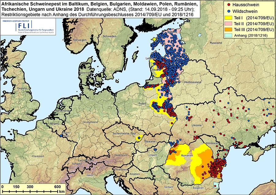 Ausbreitung der afrikanischen Schweinepest in der EU (Stand 9/2018) (Quelle: FLI)