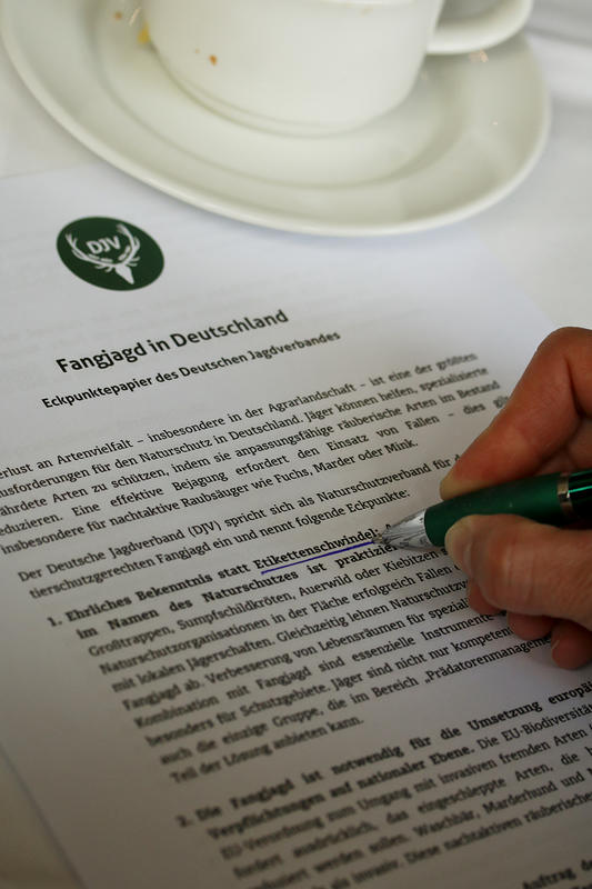 DJV stellt Eckpunktepapier zur Fangjagd in Deutschland vor.  Hier der Link zum Eckpunktepapier: http://bit.ly/1swN1XM